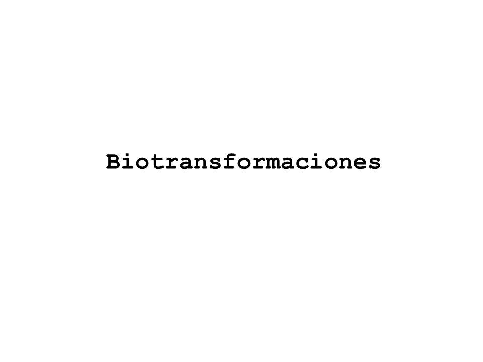 Biotransformaciones