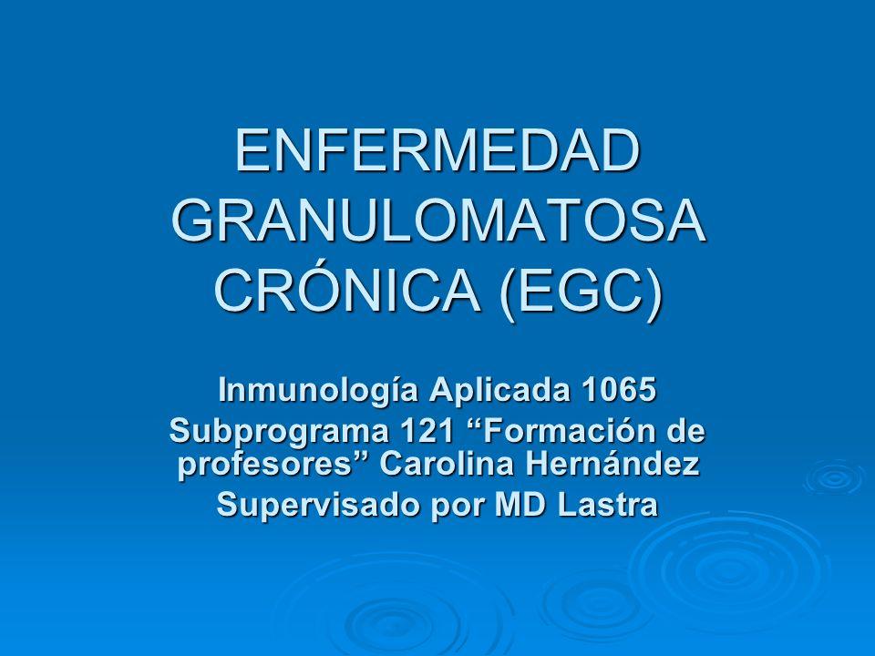 Tratamiento Estudios clínicos informan incrementos alentadores en la función oxidativa y el restablecimiento del citocromo citoplasmático en pacientes con EGC tratados con IFN-gamma.