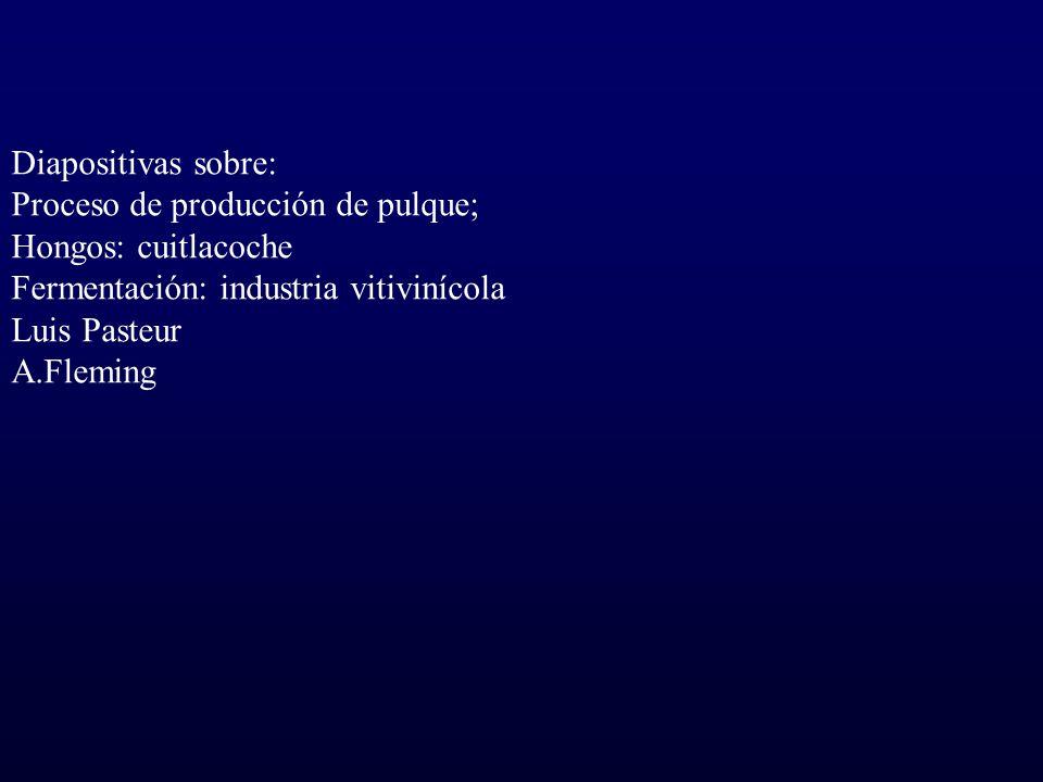 Diapositivas sobre: Proceso de producción de pulque; Hongos: cuitlacoche Fermentación: industria vitivinícola Luis Pasteur A.Fleming