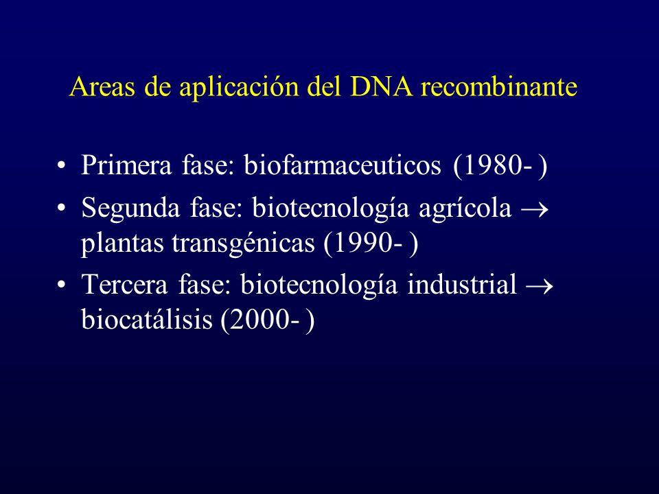 Areas de aplicación del DNA recombinante Primera fase: biofarmaceuticos (1980- ) Segunda fase: biotecnología agrícola plantas transgénicas (1990- ) Te