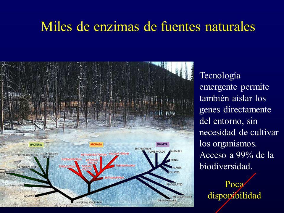 Miles de enzimas de fuentes naturales Tecnología emergente permite también aislar los genes directamente del entorno, sin necesidad de cultivar los or