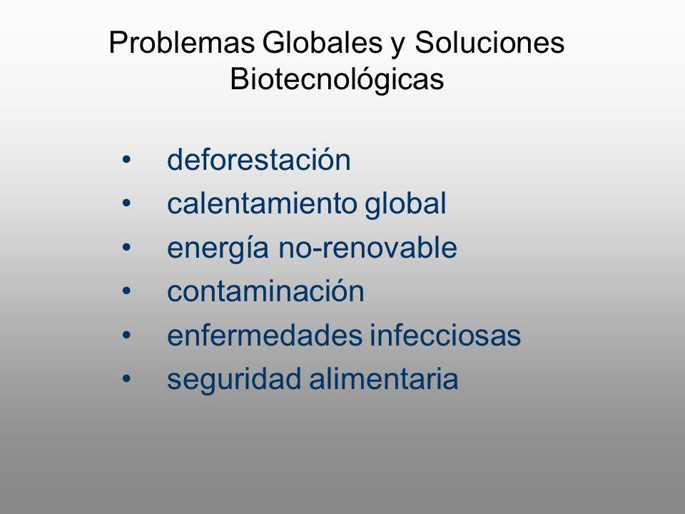 deforestación calentamiento global energía no-renovable contaminación enfermedades infecciosas seguridad alimentaria Problemas Globales y Soluciones B