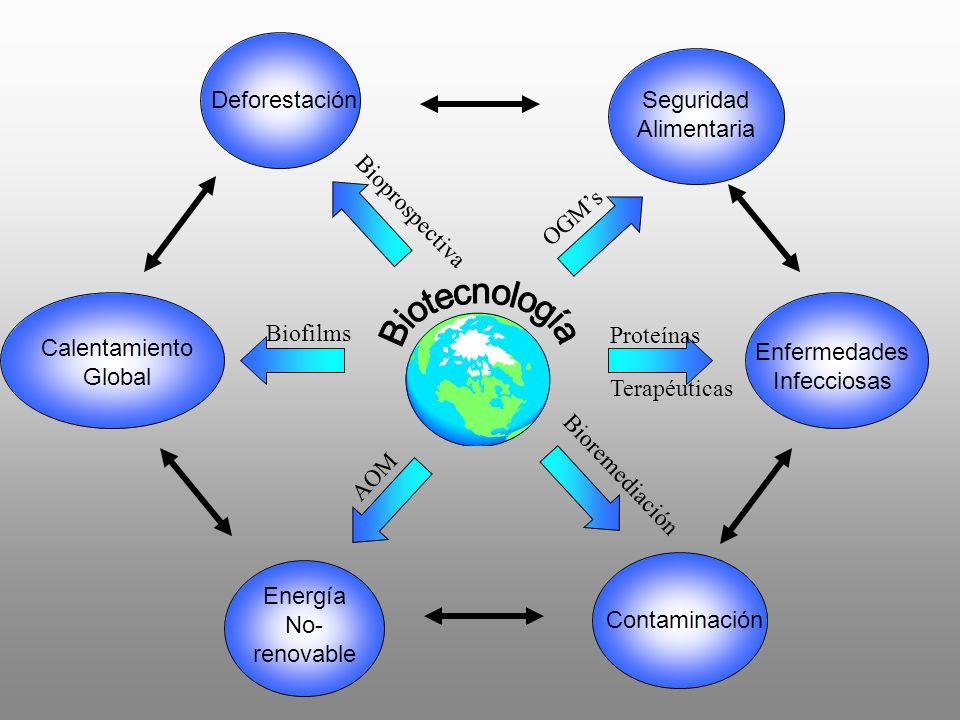 Deforestación Calentamiento Global Energía No- renovable Contaminación Enfermedades Infecciosas Seguridad Alimentaria OGMs AOM Bioprospectiva Bioremed