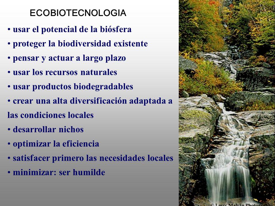 usar el potencial de la biósfera proteger la biodiversidad existente pensar y actuar a largo plazo usar los recursos naturales usar productos biodegra