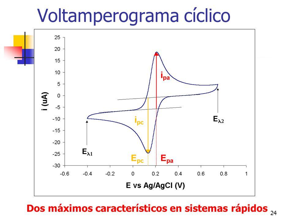 24 Voltamperograma cíclico Dos máximos característicos en sistemas rápidos