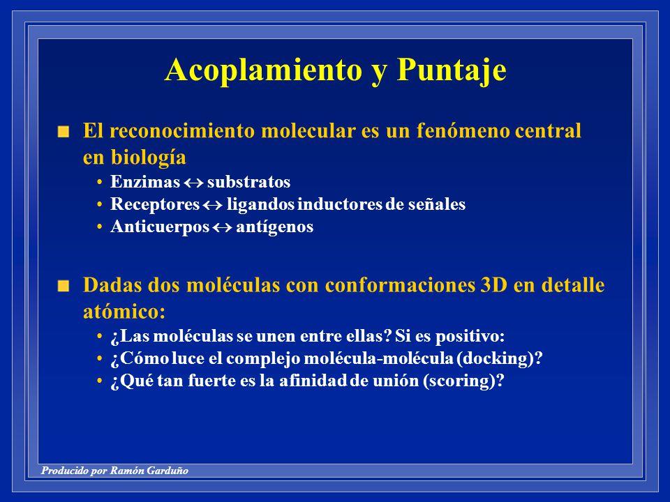 Producido por Ramón Garduño Acoplamiento y Puntaje El reconocimiento molecular es un fenómeno central en biología Enzimas substratos Receptores ligandos inductores de señales Anticuerpos antígenos Dadas dos moléculas con conformaciones 3D en detalle atómico: ¿Las moléculas se unen entre ellas.