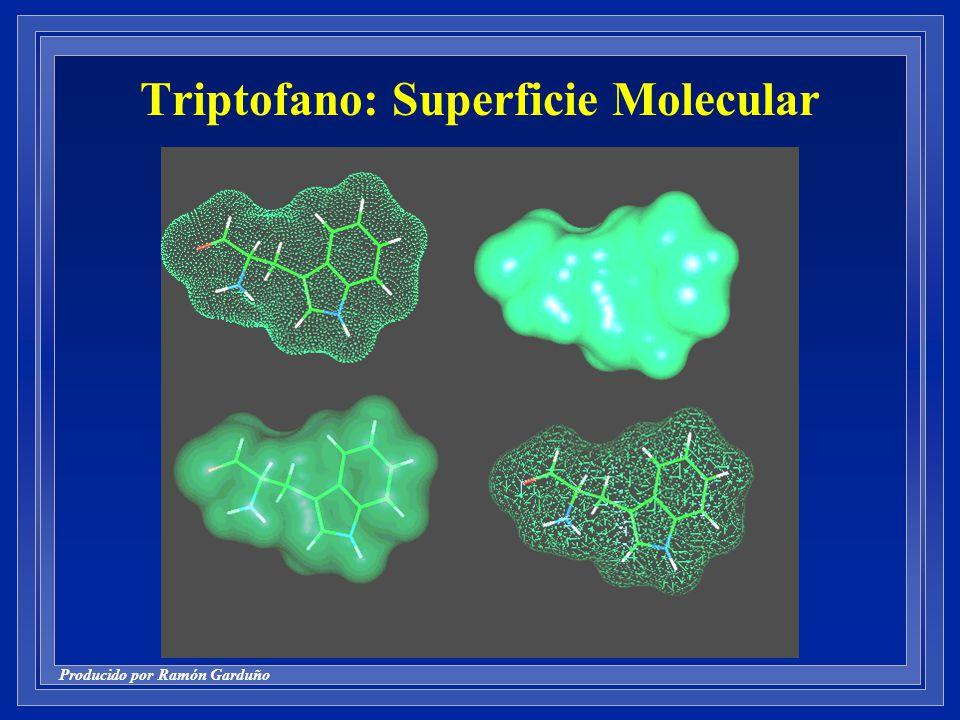 Producido por Ramón Garduño Triptofano: Superficie Molecular
