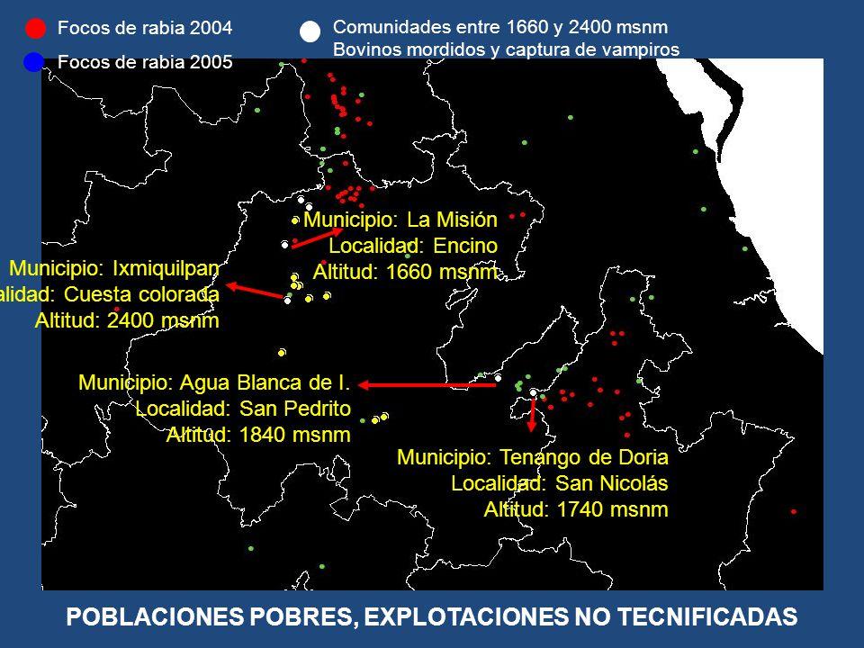 Comunidades entre 1660 y 2400 msnm Bovinos mordidos y captura de vampiros Focos de rabia 2005 Focos de rabia 2004 Municipio: Ixmiquilpan Localidad: Cu