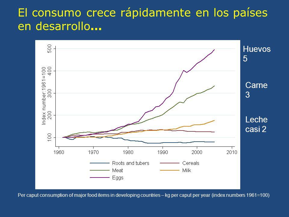 Per caput consumption of major food items in developing countries – kg per caput per year (index numbers 1961=100) El consumo crece rápidamente en los