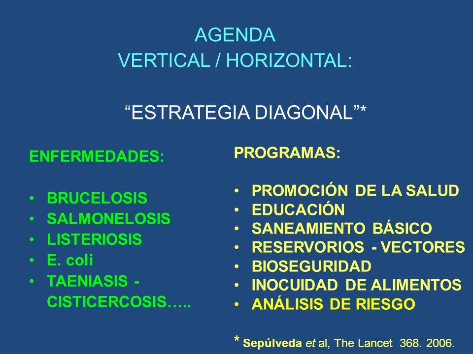 AGENDA VERTICAL / HORIZONTAL: ESTRATEGIA DIAGONAL* ENFERMEDADES: BRUCELOSIS SALMONELOSIS LISTERIOSIS E. coli TAENIASIS - CISTICERCOSIS….. PROGRAMAS: P