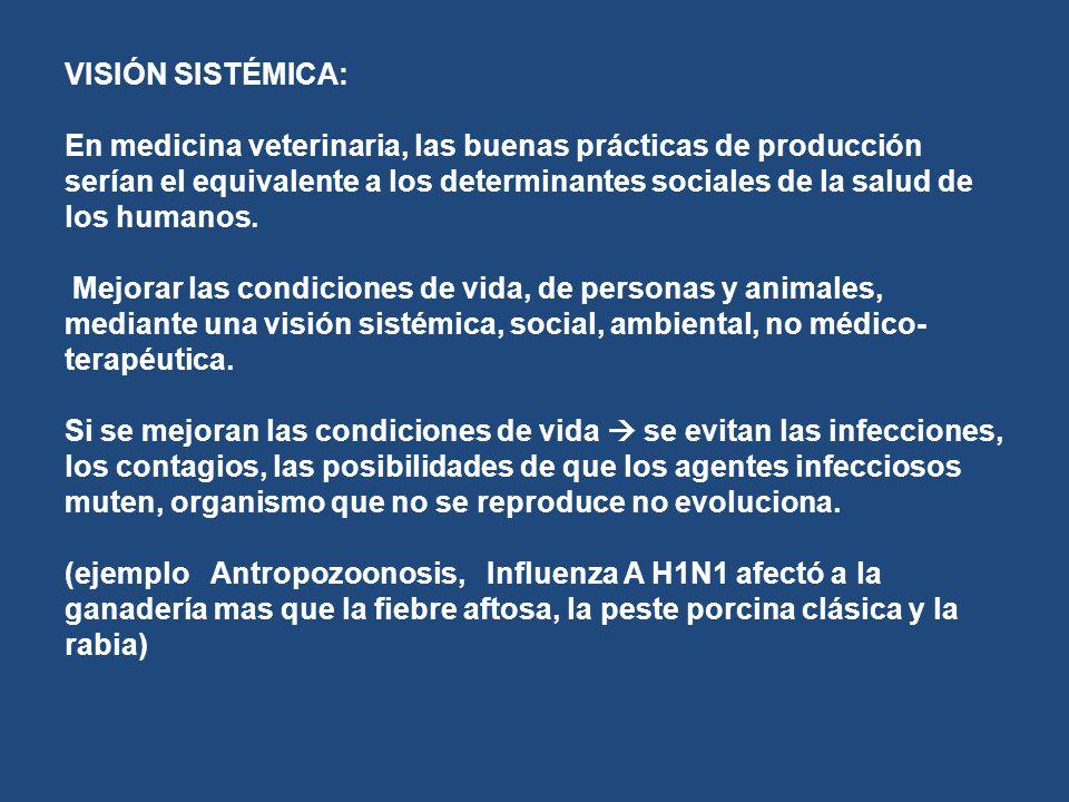 VISIÓN SISTÉMICA: En medicina veterinaria, las buenas prácticas de producción serían el equivalente a los determinantes sociales de la salud de los hu