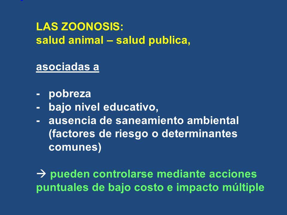 LAS ZOONOSIS: salud animal – salud publica, asociadas a -pobreza -bajo nivel educativo, -ausencia de saneamiento ambiental (factores de riesgo o deter