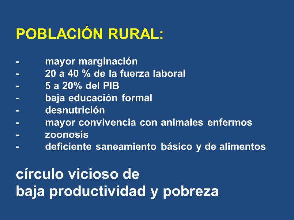 POBLACIÓN RURAL: -mayor marginación -20 a 40 % de la fuerza laboral -5 a 20% del PIB -baja educación formal -desnutrición -mayor convivencia con anima