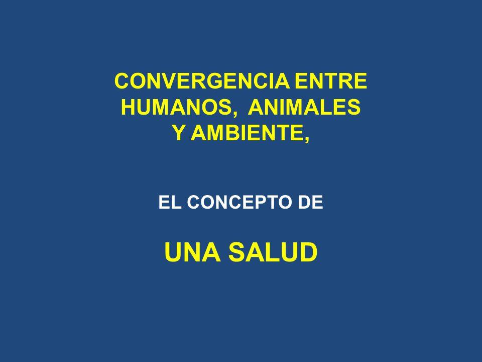 INTERFAZ: Salud humana (Ministerio de Salud) Salud animal (Ministerio de Agricultura) Ambiente (Ministerio de Ambiente) No puede haber SALUD HUMANA si no hay SALUD ANIMAL.