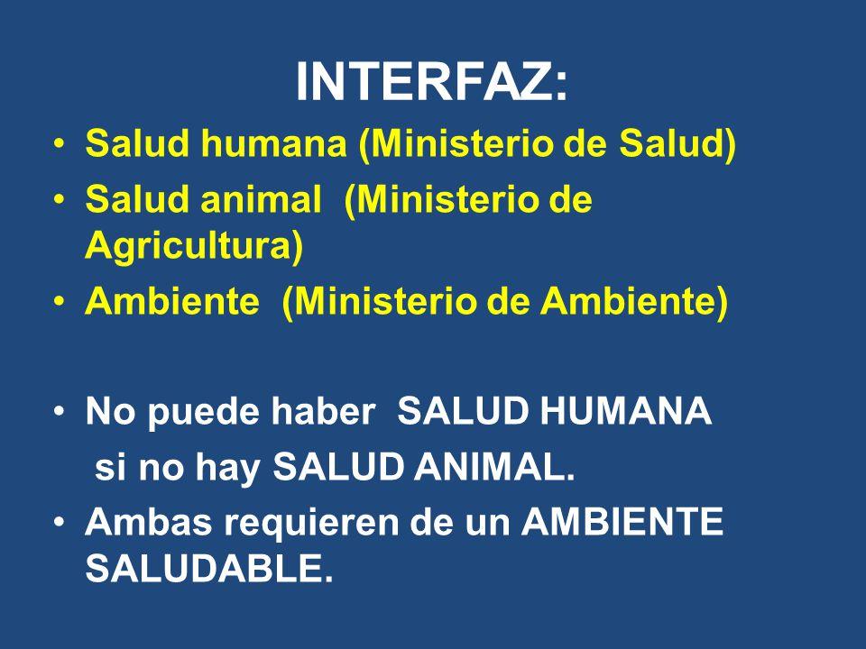 INTERFAZ: Salud humana (Ministerio de Salud) Salud animal (Ministerio de Agricultura) Ambiente (Ministerio de Ambiente) No puede haber SALUD HUMANA si