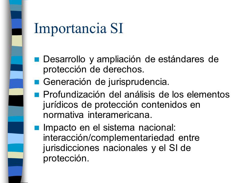 Importancia SI Desarrollo y ampliación de estándares de protección de derechos. Generación de jurisprudencia. Profundización del análisis de los eleme