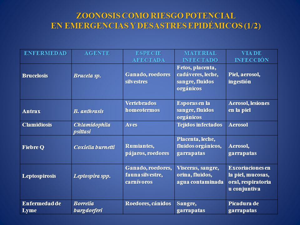 ENFERMEDADAGENTE ESPECIE AFECTADA MATERIAL INFECTADO VIA DE INFECCIÓN Brucelosis Brucela sp. Ganado, roedores silvestres Fetos, placenta, cadáveres, l
