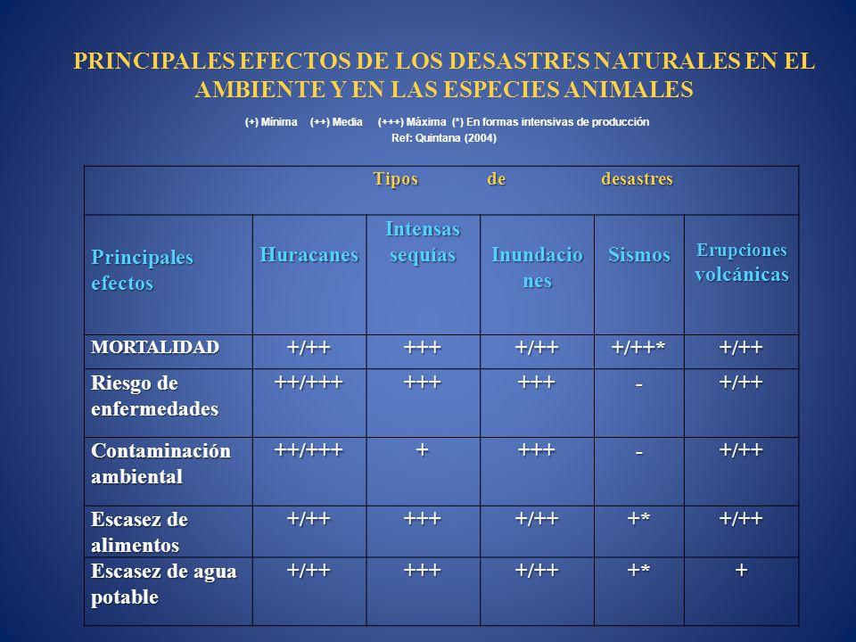 Tiposdedesastres Principales efectos Huracanes Intensas sequías Inundacio nes Sismos Erupciones volcánicas MORTALIDAD+/++++++/+++/++*+/++ Riesgo de en