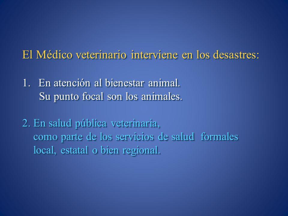 El Médico veterinario interviene en los desastres: 1.En atención al bienestar animal. Su punto focal son los animales. Su punto focal son los animales