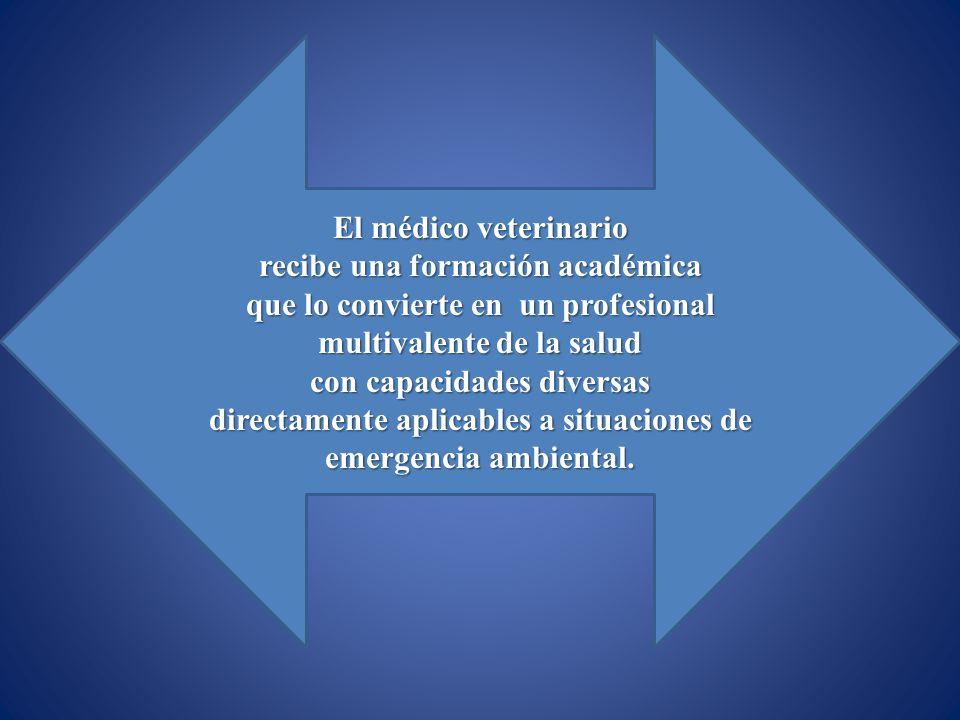 El médico veterinario recibe una formación académica que lo convierte en un profesional multivalente de la salud con capacidades diversas directamente