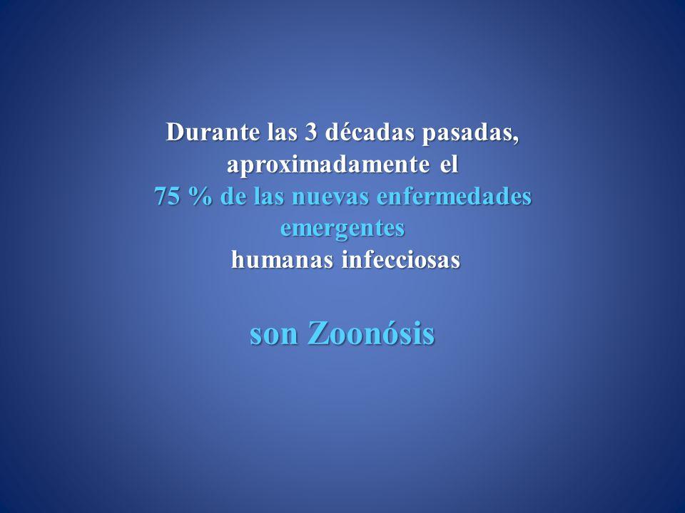 Durante las 3 décadas pasadas, aproximadamente el 75 % de las nuevas enfermedades emergentes humanas infecciosas humanas infecciosas son Zoonósis