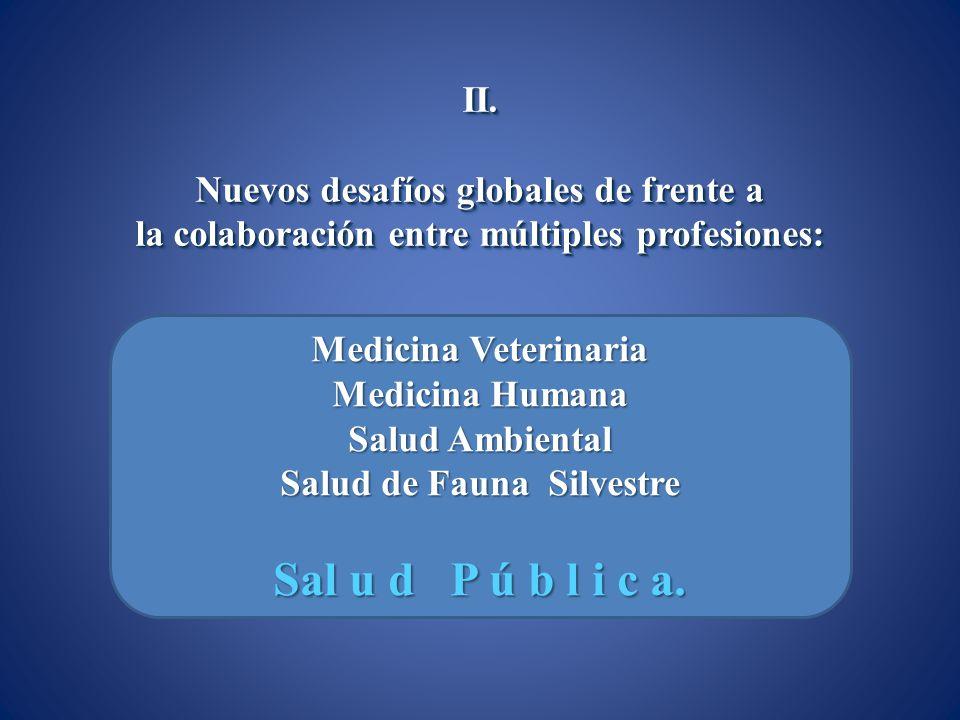 II. Nuevos desafíos globales de frente a la colaboración entre múltiples profesiones: II. Nuevos desafíos globales de frente a la colaboración entre m