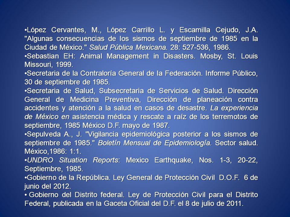 López Cervantes, M., López Carrillo L. y Escamilla Cejudo, J.A.