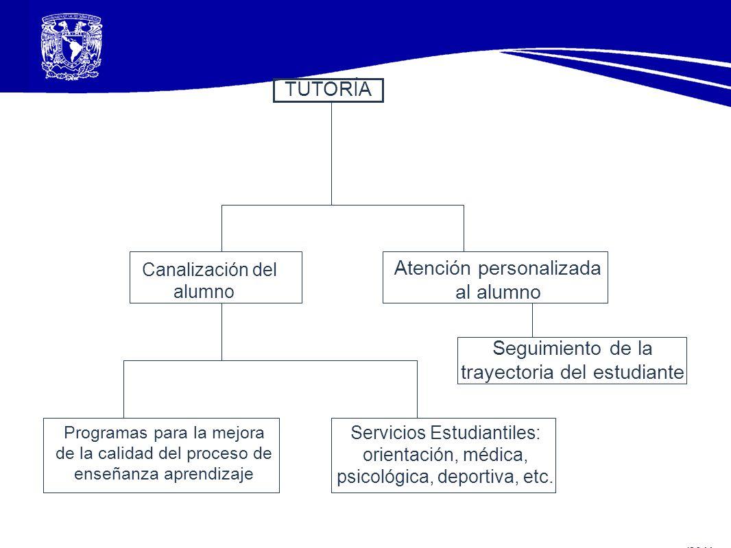 TUTORÍA Canalización del alumno Atención personalizada al alumno Seguimiento de la trayectoria del estudiante Programas para la mejora de la calidad d