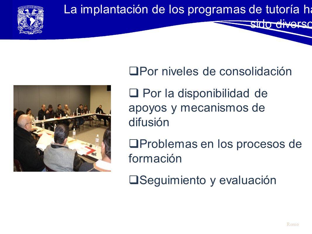 Por niveles de consolidación Por la disponibilidad de apoyos y mecanismos de difusión Problemas en los procesos de formación Seguimiento y evaluación