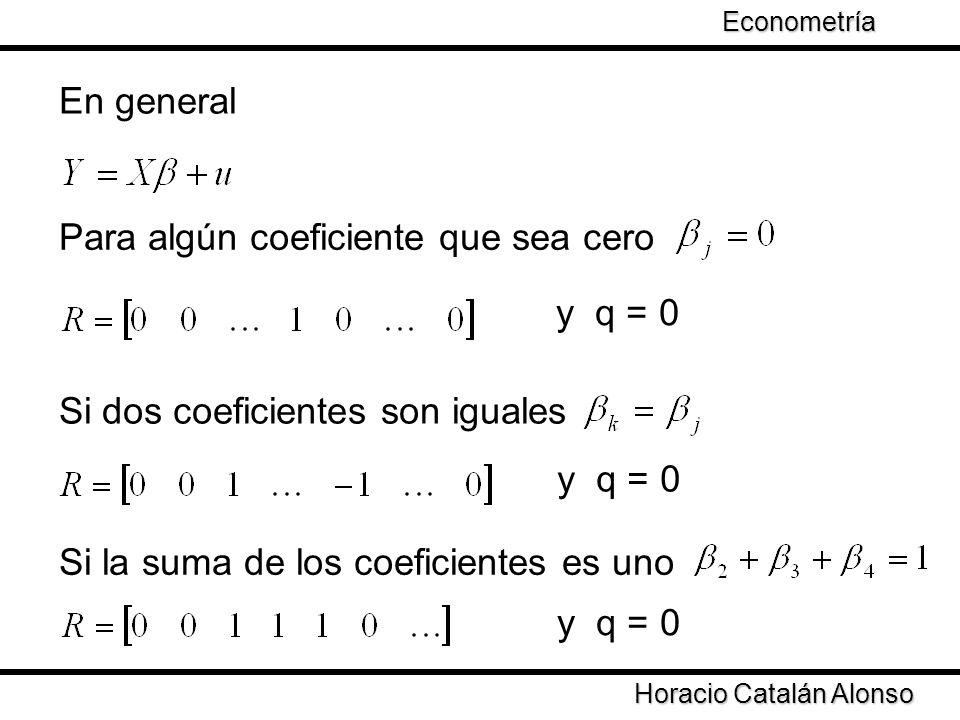 Taller de Econometría Horacio Catalán Alonso Econometría En general Para algún coeficiente que sea cero y q = 0 Si dos coeficientes son iguales y q =