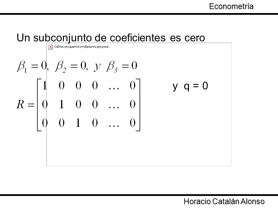 Taller de Econometría Horacio Catalán Alonso Econometría Un subconjunto de coeficientes es cero y q = 0