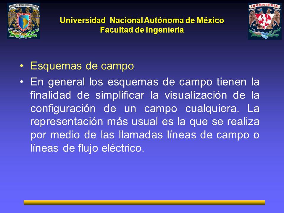 Universidad Nacional Autónoma de México Facultad de Ingeniería Esquemas de campo En general los esquemas de campo tienen la finalidad de simplificar l