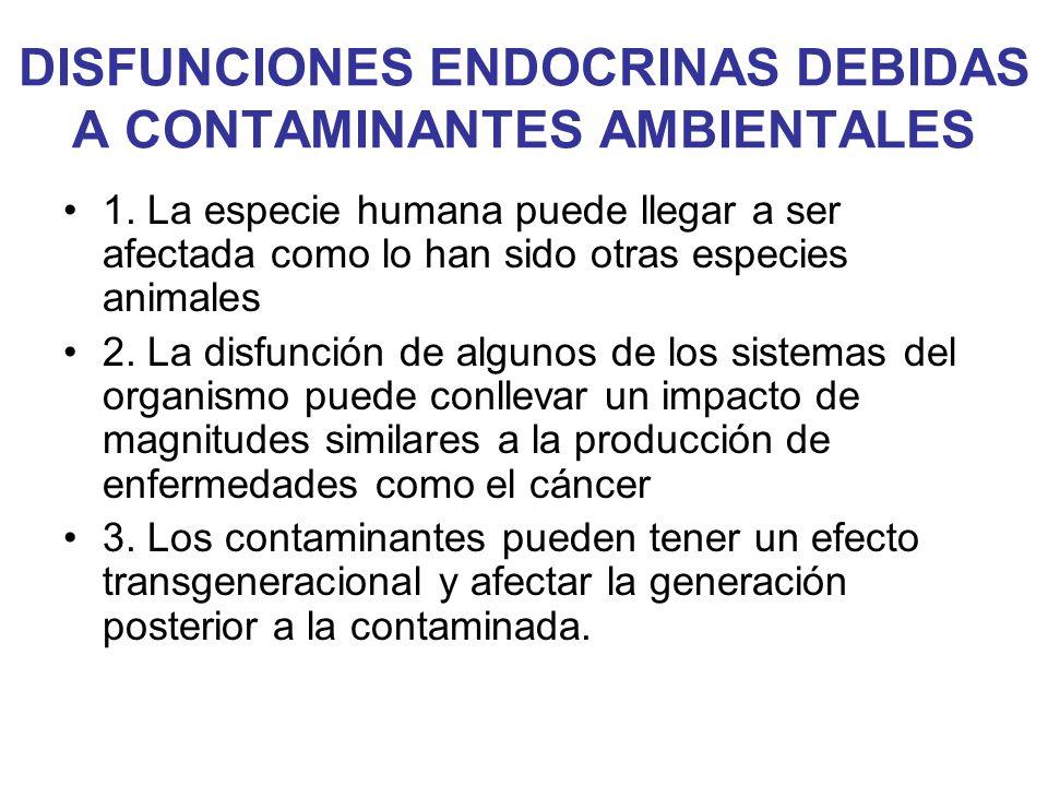 DISFUNCIONES ENDOCRINAS DEBIDAS A CONTAMINANTES AMBIENTALES 1. La especie humana puede llegar a ser afectada como lo han sido otras especies animales