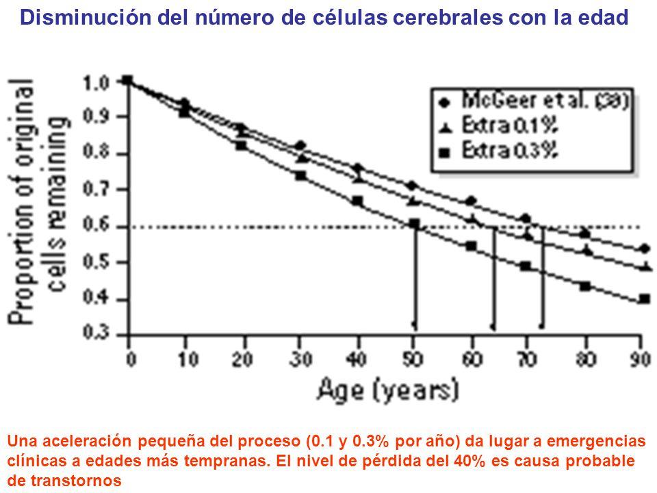 Disminución del número de células cerebrales con la edad Una aceleración pequeña del proceso (0.1 y 0.3% por año) da lugar a emergencias clínicas a ed