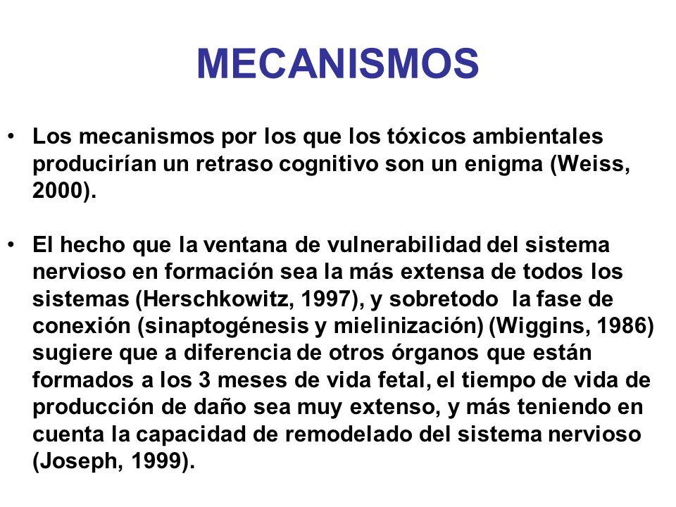 MECANISMOS Los mecanismos por los que los tóxicos ambientales producirían un retraso cognitivo son un enigma (Weiss, 2000). El hecho que la ventana de