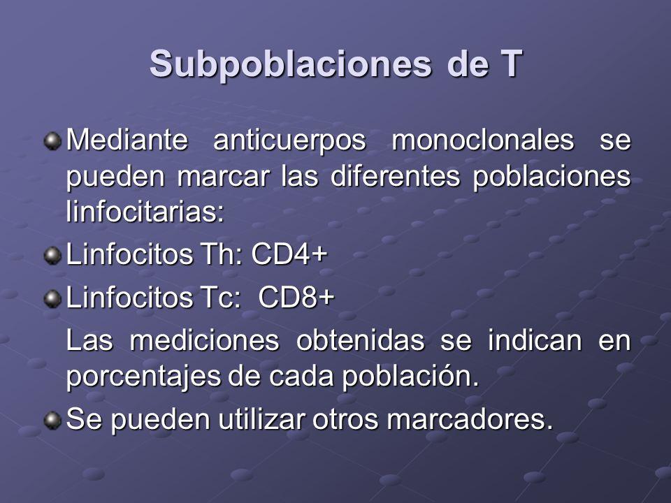 Subpoblaciones de T Mediante anticuerpos monoclonales se pueden marcar las diferentes poblaciones linfocitarias: Linfocitos Th: CD4+ Linfocitos Tc: CD