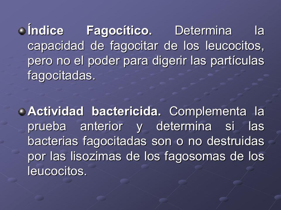 Índice Fagocítico. Determina la capacidad de fagocitar de los leucocitos, pero no el poder para digerir las partículas fagocitadas. Actividad bacteric