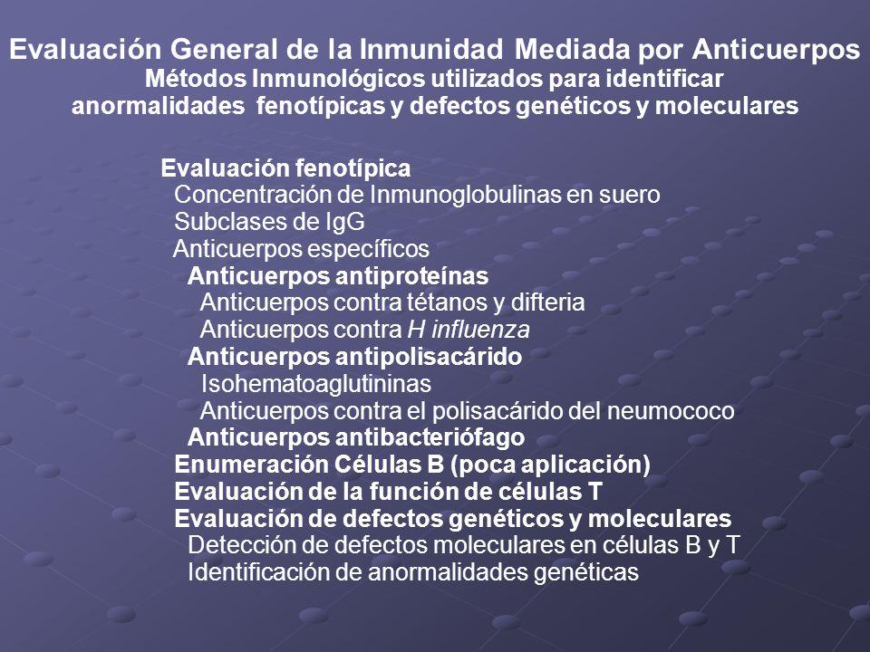 Evaluación General de la Inmunidad Mediada por Anticuerpos Métodos Inmunológicos utilizados para identificar anormalidades fenotípicas y defectos gené
