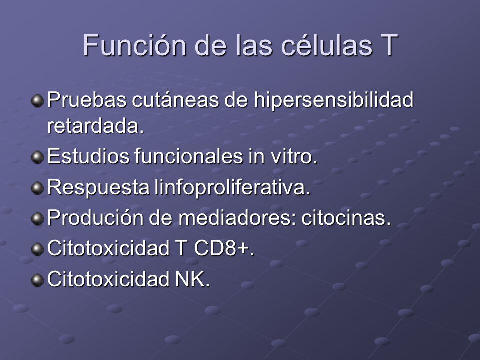 Función de las células T Pruebas cutáneas de hipersensibilidad retardada. Estudios funcionales in vitro. Respuesta linfoproliferativa. Produción de me