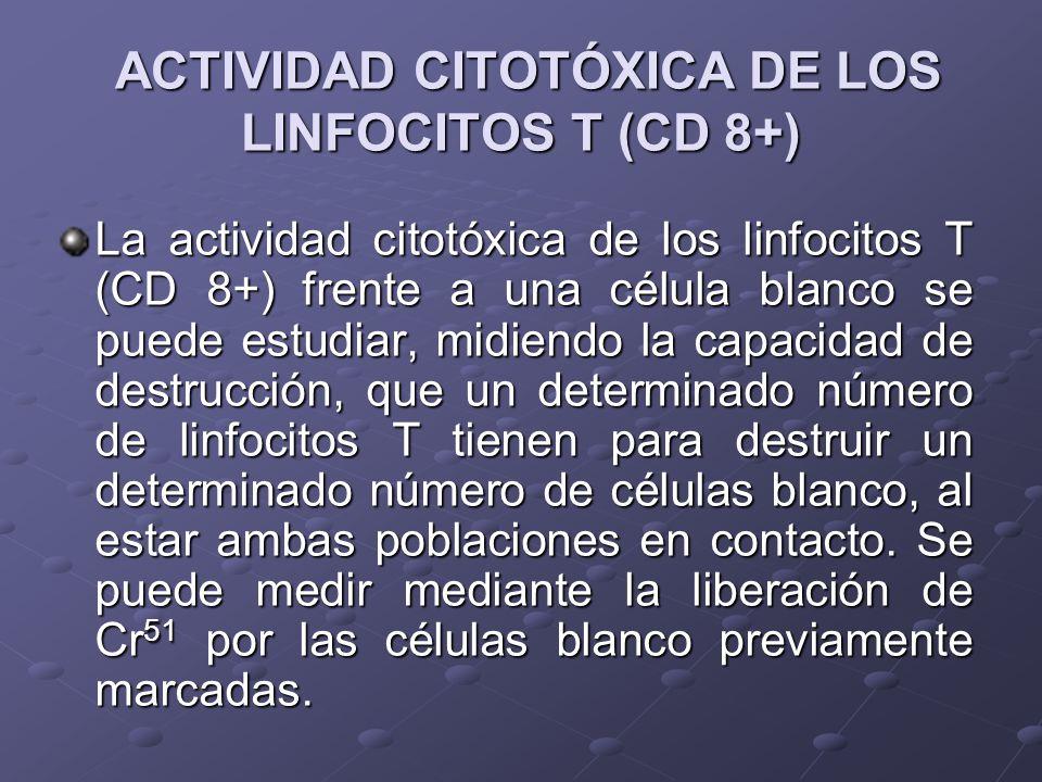 ACTIVIDAD CITOTÓXICA DE LOS LINFOCITOS T (CD 8+) ACTIVIDAD CITOTÓXICA DE LOS LINFOCITOS T (CD 8+) La actividad citotóxica de los linfocitos T (CD 8+)