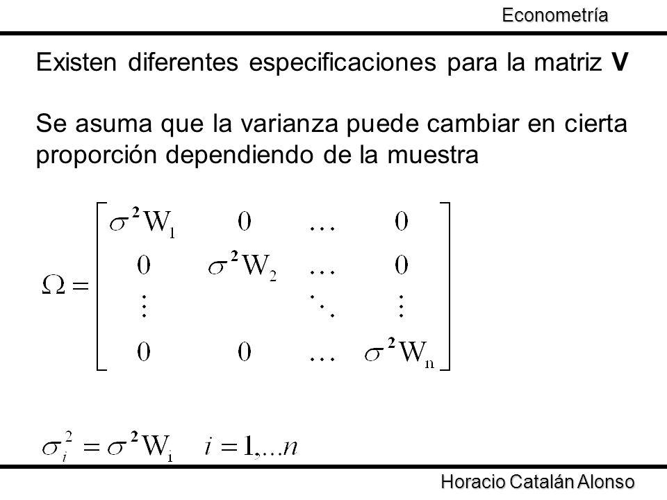 Taller de Econometría Horacio Catalán Alonso Econometría Existen diferentes especificaciones para la matriz V Se asuma que la varianza puede cambiar e