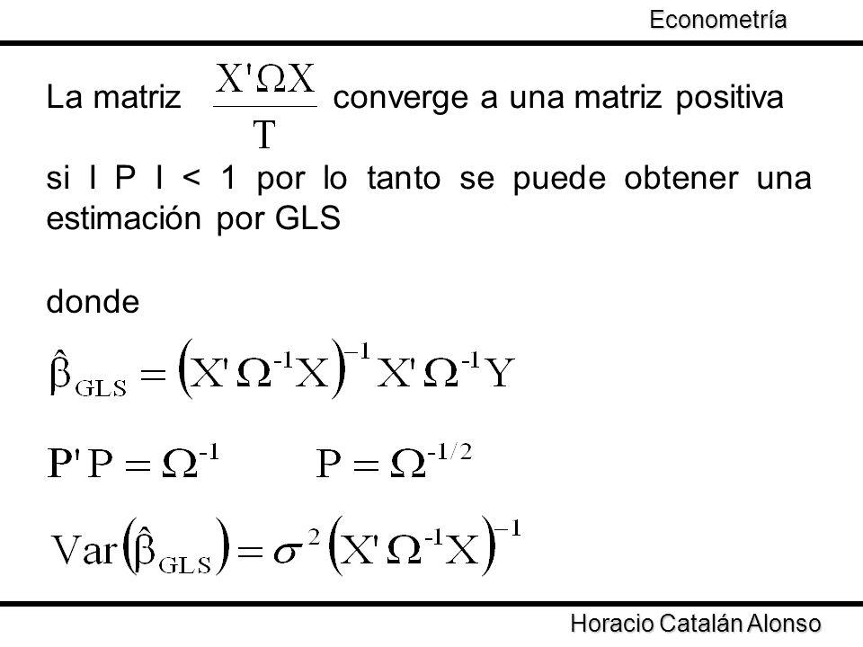 Taller de Econometría Horacio Catalán Alonso Econometría La matriz converge a una matriz positiva si І Ρ І < 1 por lo tanto se puede obtener una estim