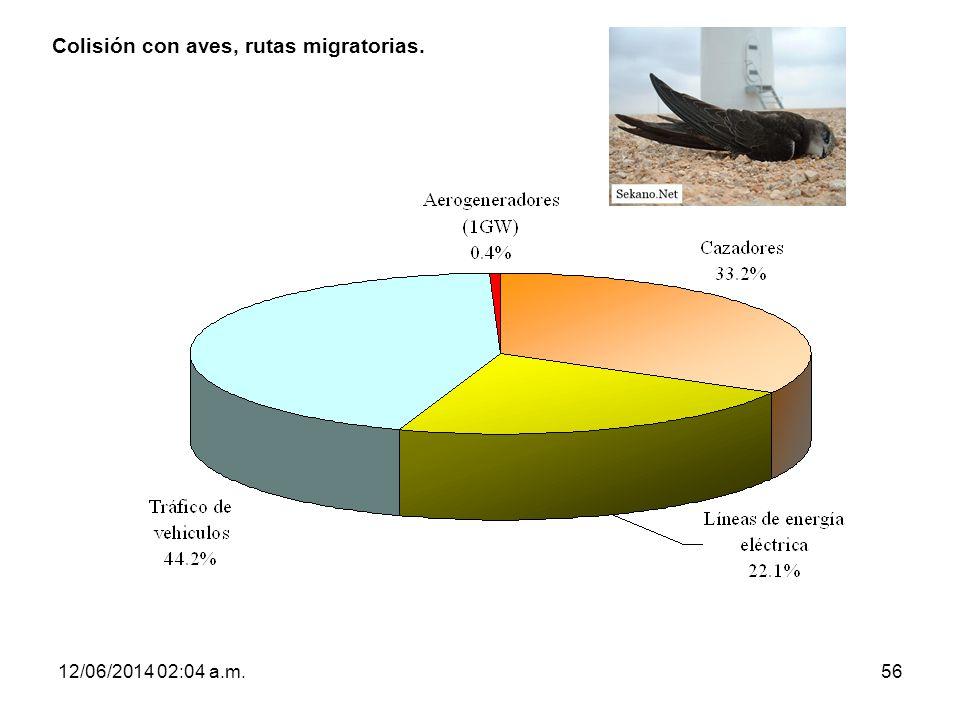 12/06/2014 02:06 a.m.56 Colisión con aves, rutas migratorias.