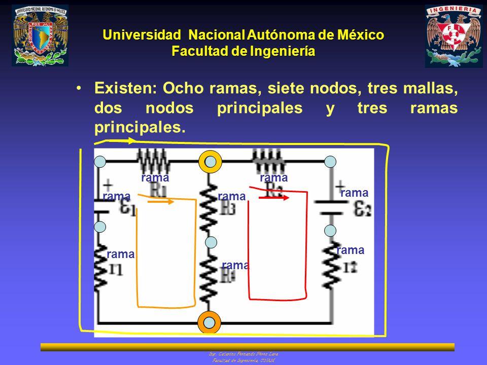 Universidad Nacional Autónoma de México Facultad de Ingeniería Ing. Catarino Fernando Pérez Lara Facultad de Ingeniería, UNAM Existen: Ocho ramas, sie