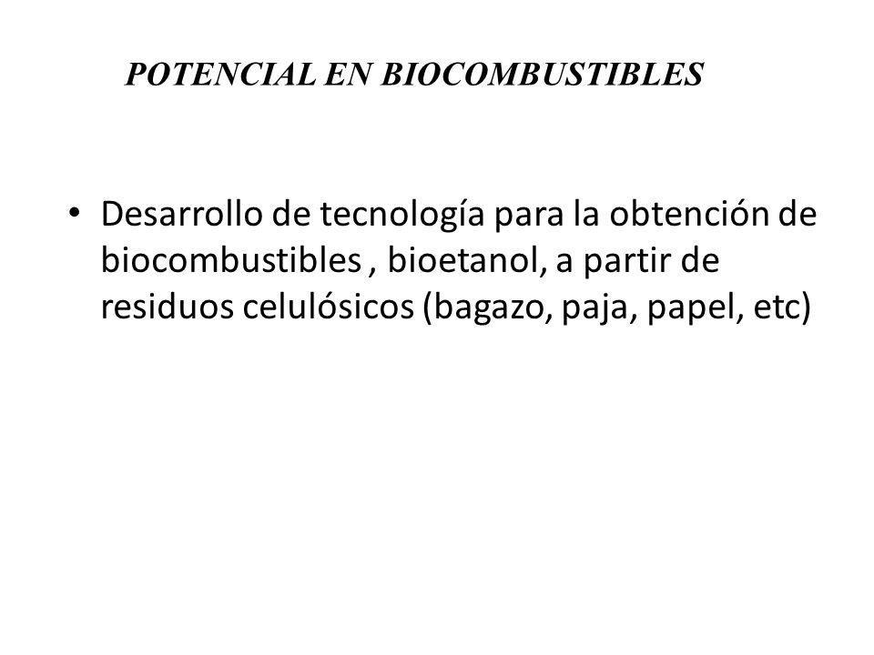 Desarrollo de tecnología para la obtención de biocombustibles, bioetanol, a partir de residuos celulósicos (bagazo, paja, papel, etc) POTENCIAL EN BIO