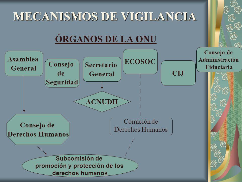 MECANISMOS DE VIGILANCIA ÓRGANOS DE LA ONU Asamblea General Consejo de Seguridad ECOSOC CIJ Consejo de Administración Fiduciaria Consejo de Derechos H