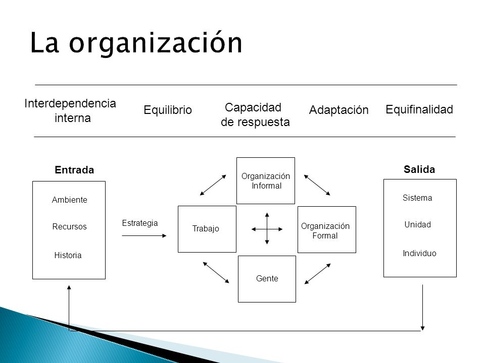 Interdependencia interna Equifinalidad Equilibrio Capacidad de respuesta Adaptación Ambiente Recursos Historia Estrategia Trabajo Gente Organización I