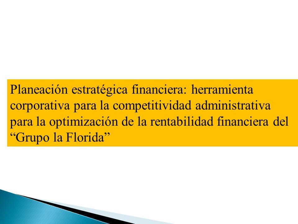 Planeación estratégica financiera: herramienta corporativa para la competitividad administrativa para la optimización de la rentabilidad financiera de