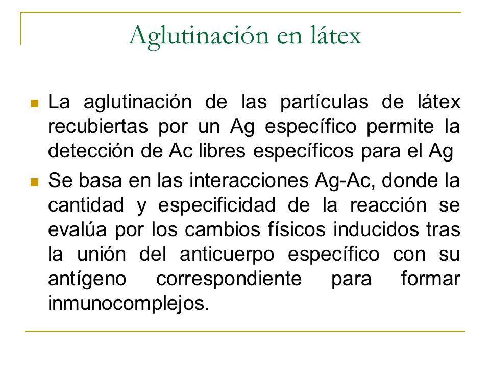 Aglutinación en látex La aglutinación de las partículas de látex recubiertas por un Ag específico permite la detección de Ac libres específicos para e