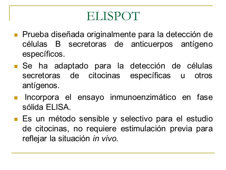 ELISPOT Prueba diseñada originalmente para la detección de células B secretoras de anticuerpos antígeno específicos. Se ha adaptado para la detección